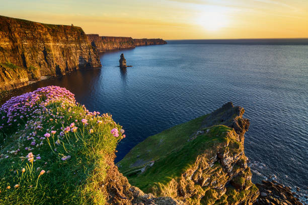Sunset at the cliffs of moher in county clare ireland beautiful picture id844102910?b=1&k=6&m=844102910&s=612x612&w=0&h=mygqq94jreyqcbmdrkjhbxrai8q1ceadtb3a66xx99e=