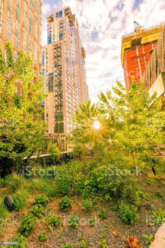 Sunset at the High Line in Spring stock photo