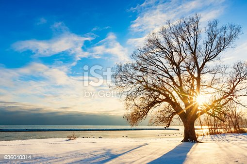 Stock photo of Sunnyside park and Lake Ontario in Toronto, Ontario, Canada at sunset, during winter.