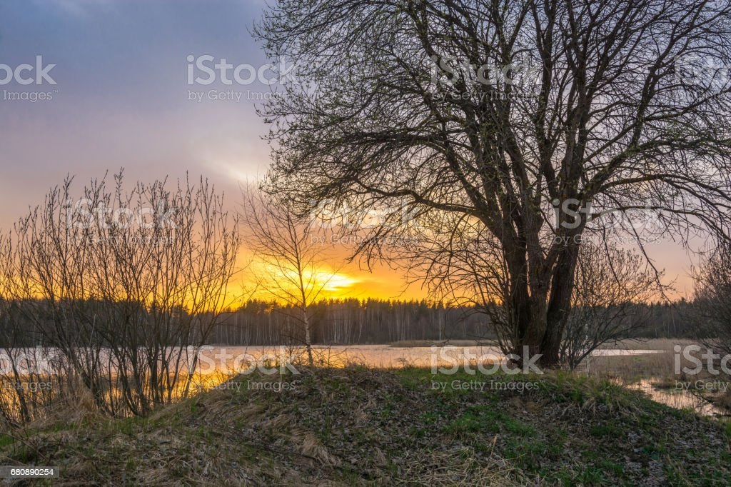Sunset at the small forest lake. royalty-free stock photo
