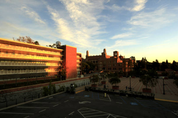 Sunset at UCLA - University of California, Los Angeles Los Angeles, United States - December 23, 2011: Sunset at UCLA - University of California, Los Angeles. royce lake stock pictures, royalty-free photos & images