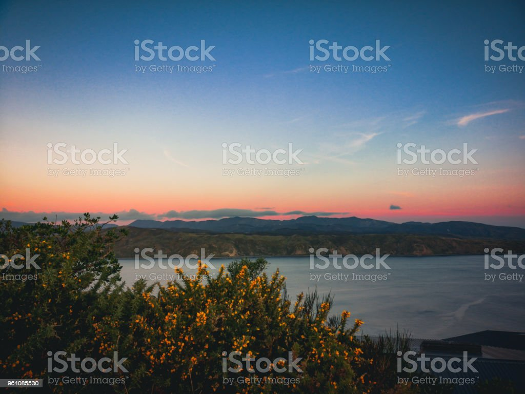 Sunset at Wellington New Zealand landscape - Royalty-free Beauty Stock Photo