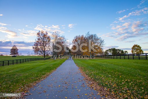 Sunset autumn landscape at countryside. Road along horse farms.