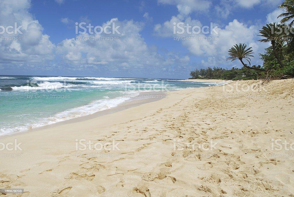 Sunset Beach Park, Oahu royalty-free stock photo