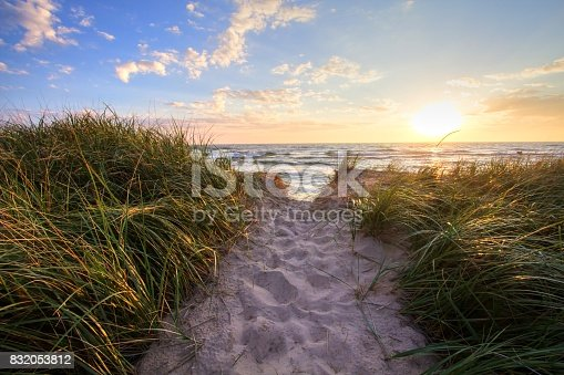 832047798 istock photo Sunset Beach Path Panoramic Background 832053812