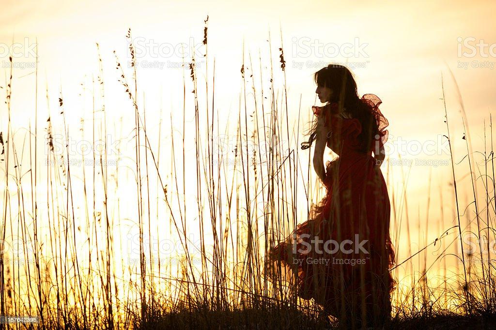 Sunset beauty royalty-free stock photo