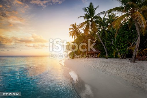 istock Sunset behind a tropical beach with coconut palm trees, sandy beach and emerald ocean 1223569372