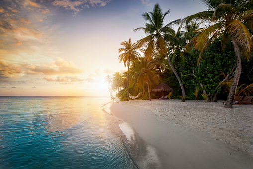 Dreamy sunset behind a tropical paradise beach with coconut palm trees, sandy beach and emerald ocean in the Maldives islands