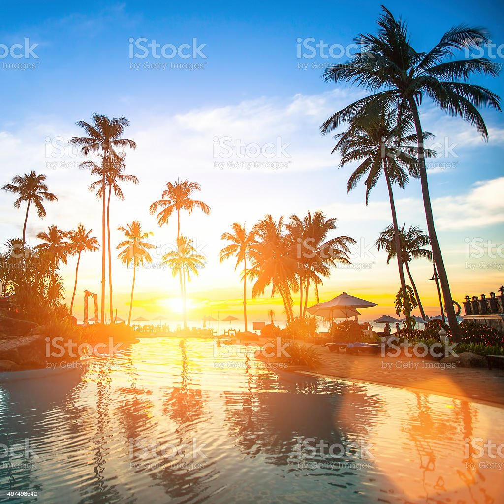 Sunset Behind Palm Trees At A Tropical Beach Resort Pool