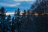 orange lights at the horizon behind a fir and beech forest in winter time