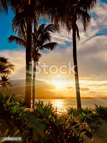Sunset between palm trees on the beach of Puerto Plata, Dominican Republic.