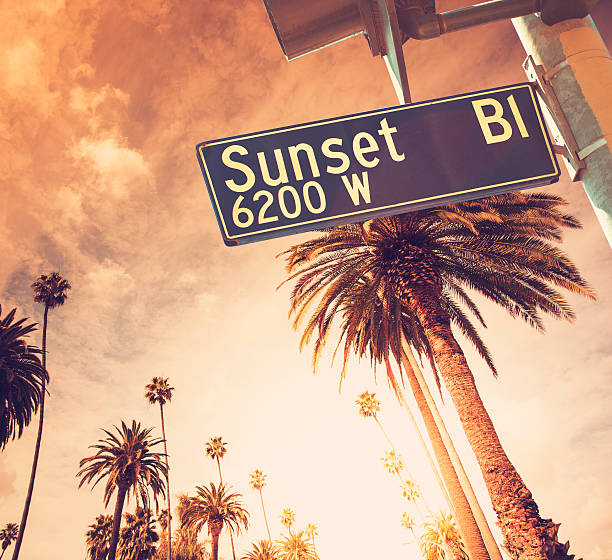 Sunset Blvd in Los Angeles California Sunset Blvd in Los Angeles California. Palm trees and sun flare can be seen in the background. sunset boulevard los angeles stock pictures, royalty-free photos & images