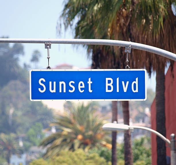 Sunset Blvd Sign in Hollywood California Sunset Blvd street sign with palm trees in Hollywood, California. sunset strip stock pictures, royalty-free photos & images