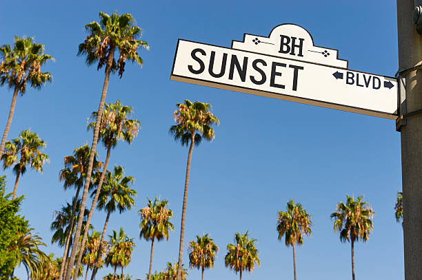 Sunset Boulevard street sign Sunset Boulevard street sign with palm trees in the background. sunset boulevard los angeles stock pictures, royalty-free photos & images