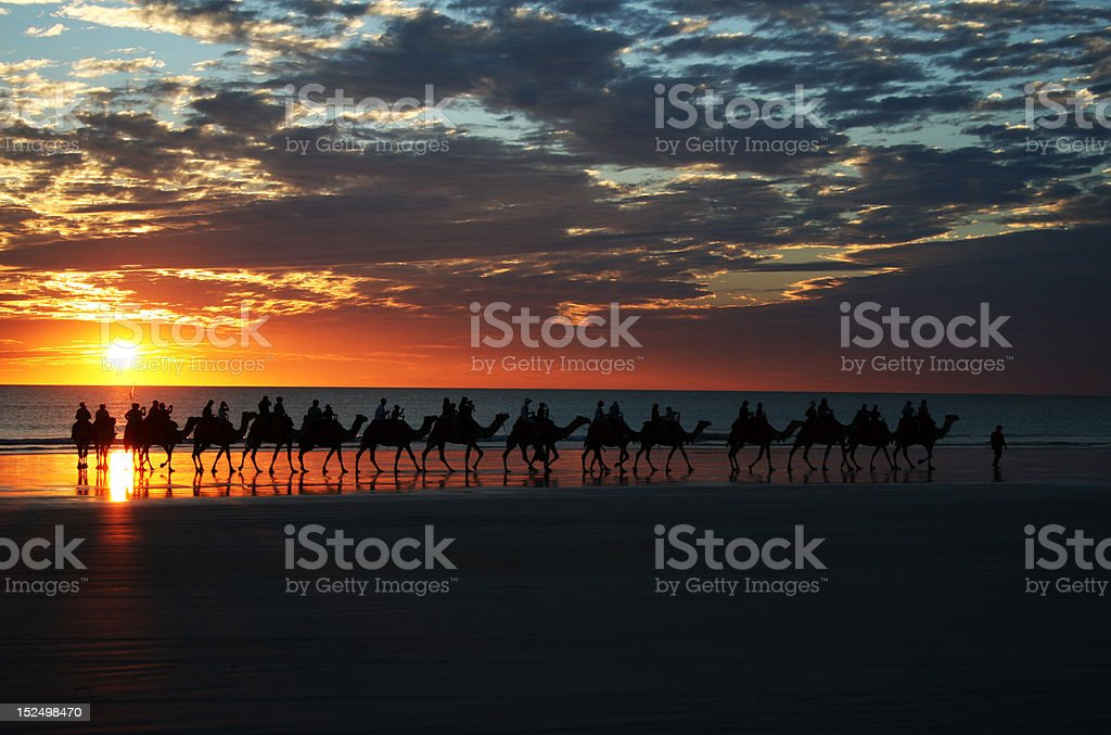 Sunset Camel Ride Cable Beach, Broome, North Western Australia stock photo