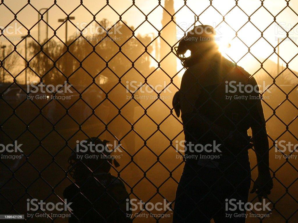 Sunset Chat with the Umpire stock photo