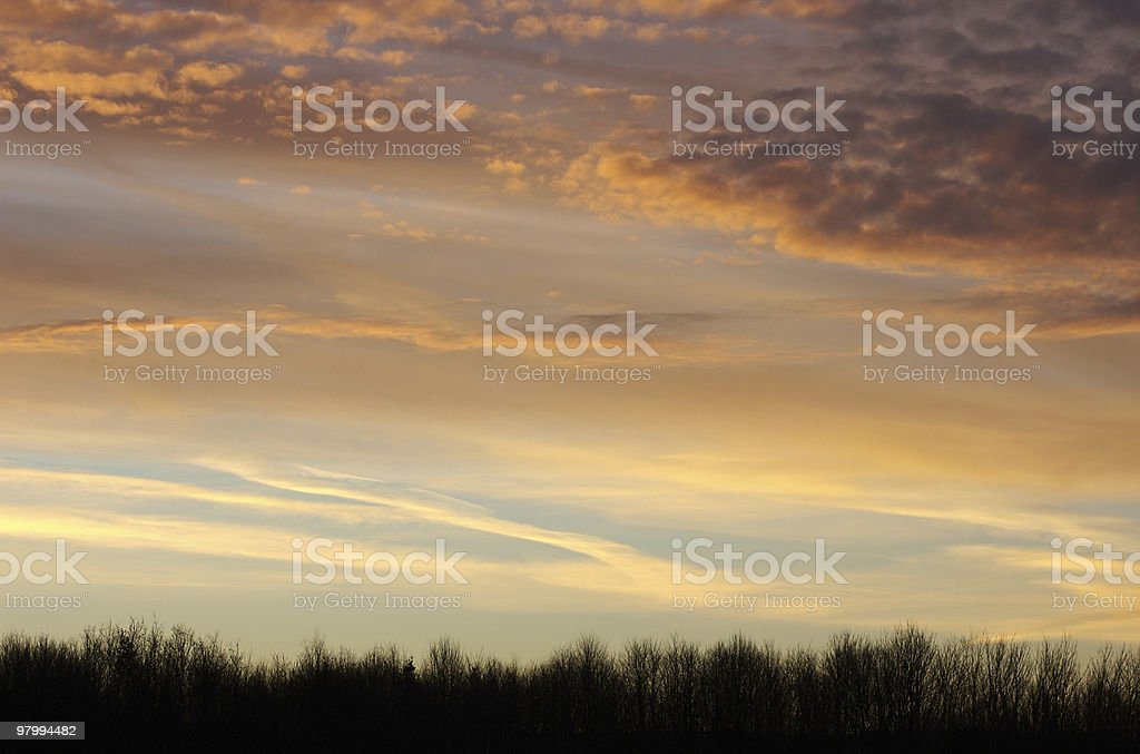 Sunset cloudscape over treeline, copy space, background royalty free stockfoto