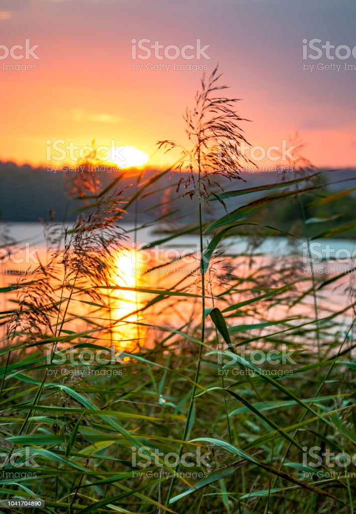Sunset Coloring The Sky Over A Lake In Sandefjord Norway Stock Photo ...