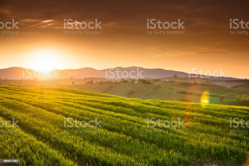 sunset countryside in italy royalty-free stock photo