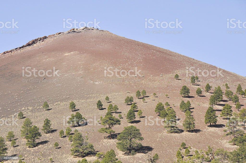 Sunset Crater Volcano National Monument, Arizona stock photo