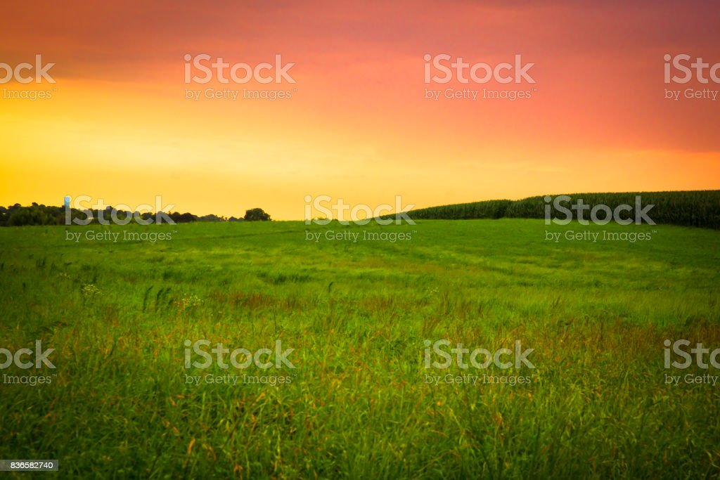 Sunset Farm stock photo