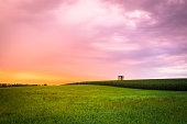 istock Sunset Farm 836582752
