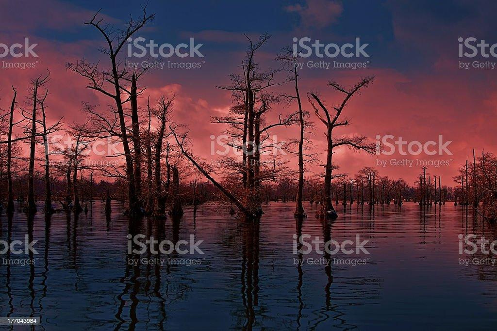 sunset fire stock photo