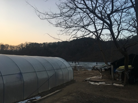Sunset, fishing people and green house