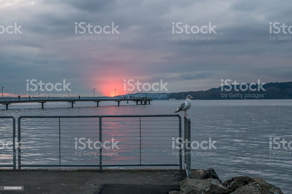 Sunset Flare-up 2 royalty-free stock photo