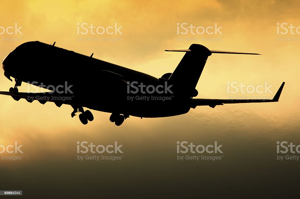 Sunset Flight royalty-free stock photo