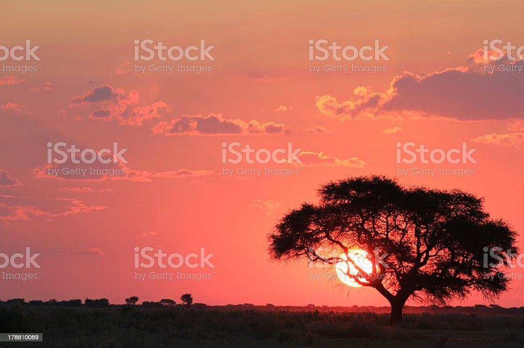 Sunset from Africa - Red Shine of Golden Imagination royalty-free stock photo