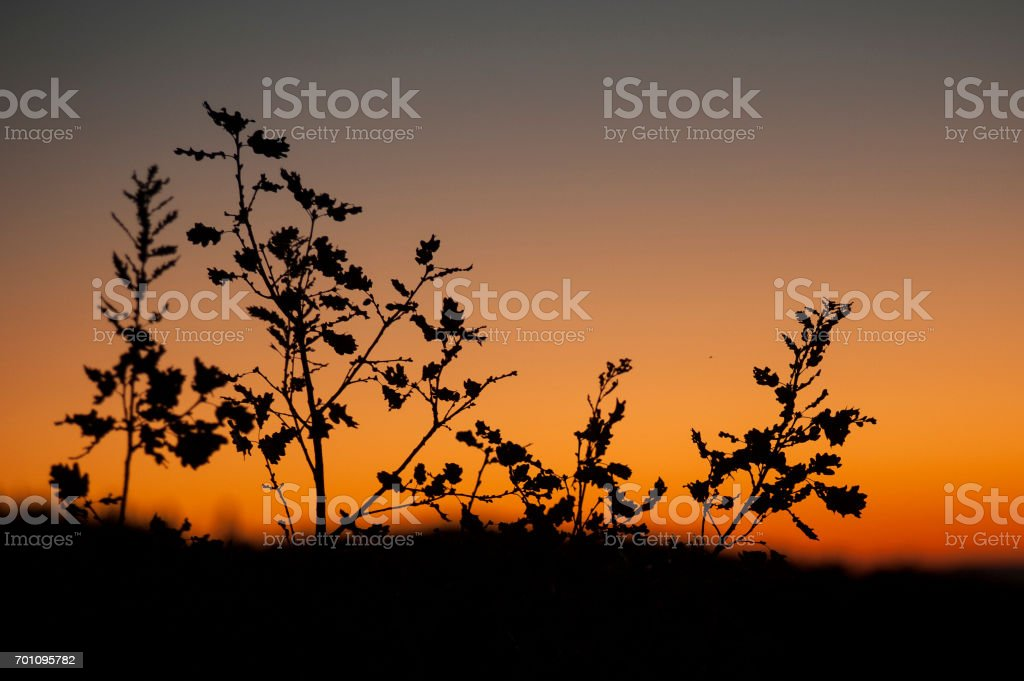 Sunset from Castiglione d'Orcia - Rocca d'Orcia, seen from Bagno Vignoni, Tuscany, Italy stock photo