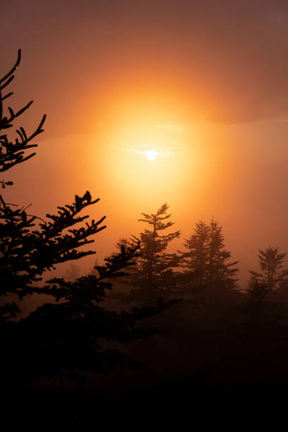 Sunset from Clingmans Dome - Vertical stock photo