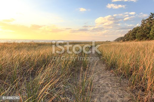 832047798 istock photo Sunset Horizon Over Golden Dunes 614992240