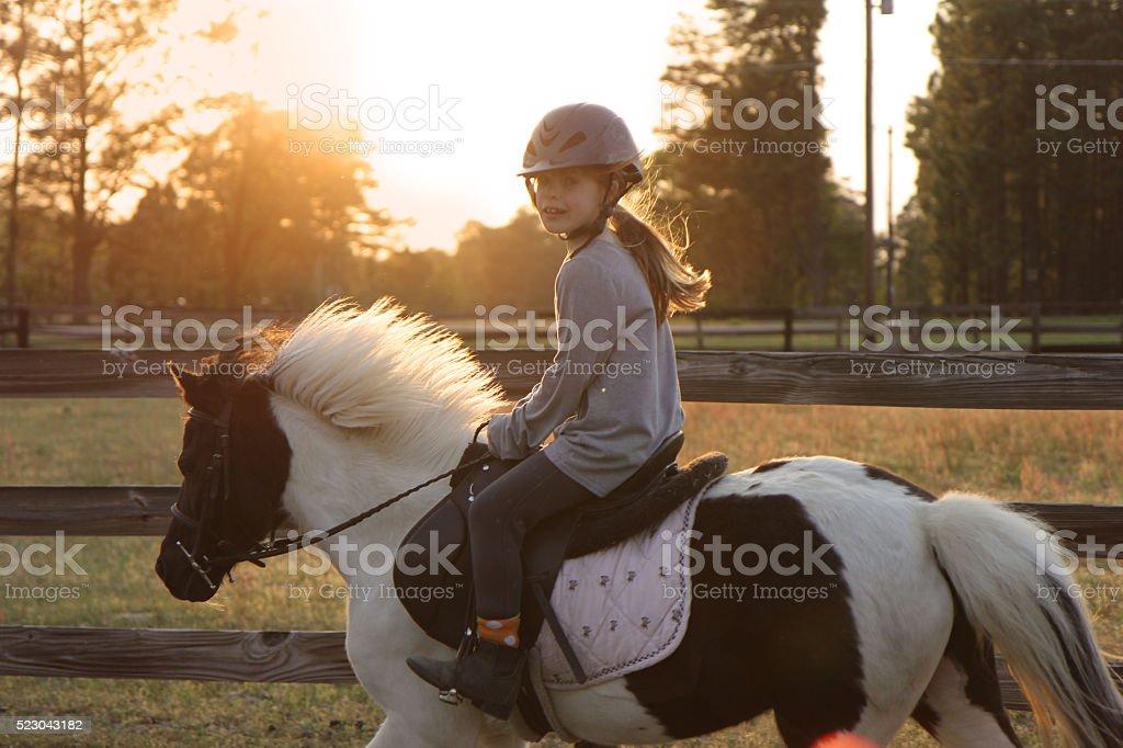 Sunset horse girl stock photo