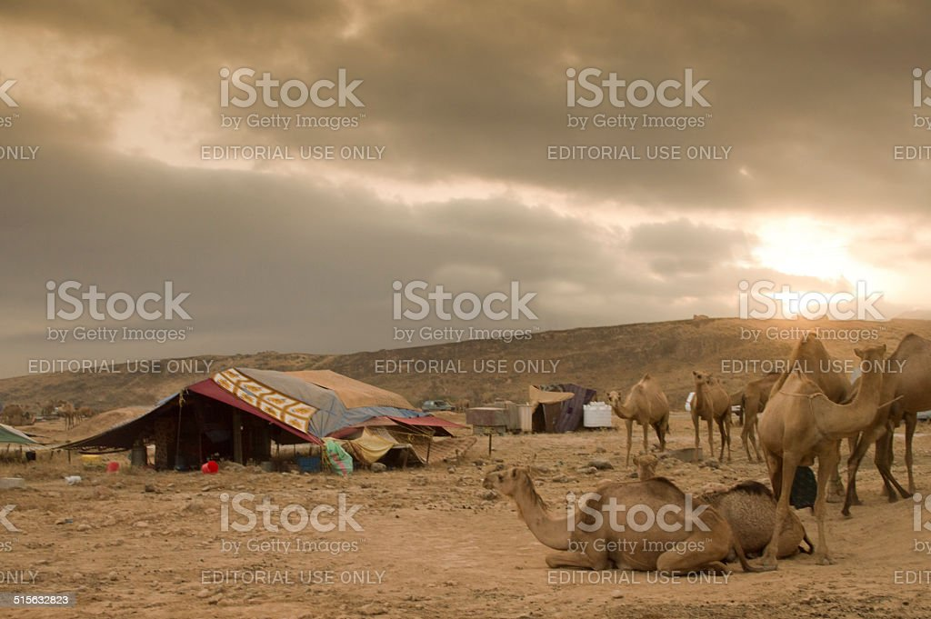 Sunset in a Bedu camp stock photo