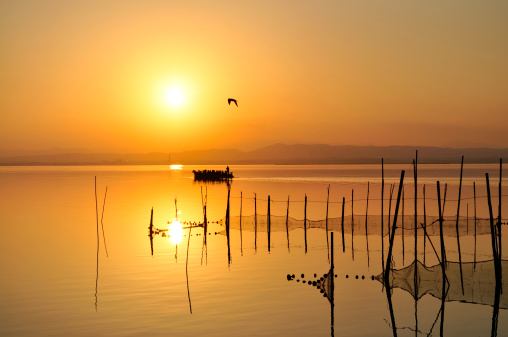 Sunset in Albufera
