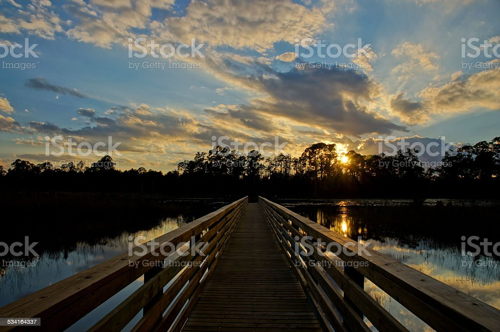 Sunset in Central Florida stock photo