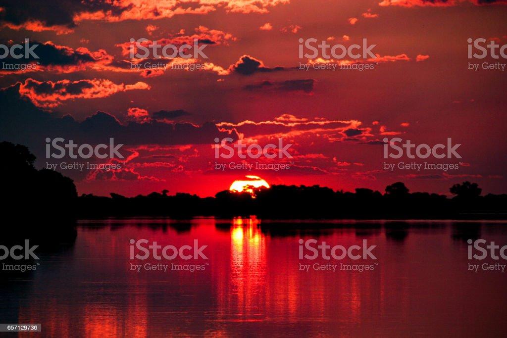 Sunset in Chobe National Park, Botswana stock photo
