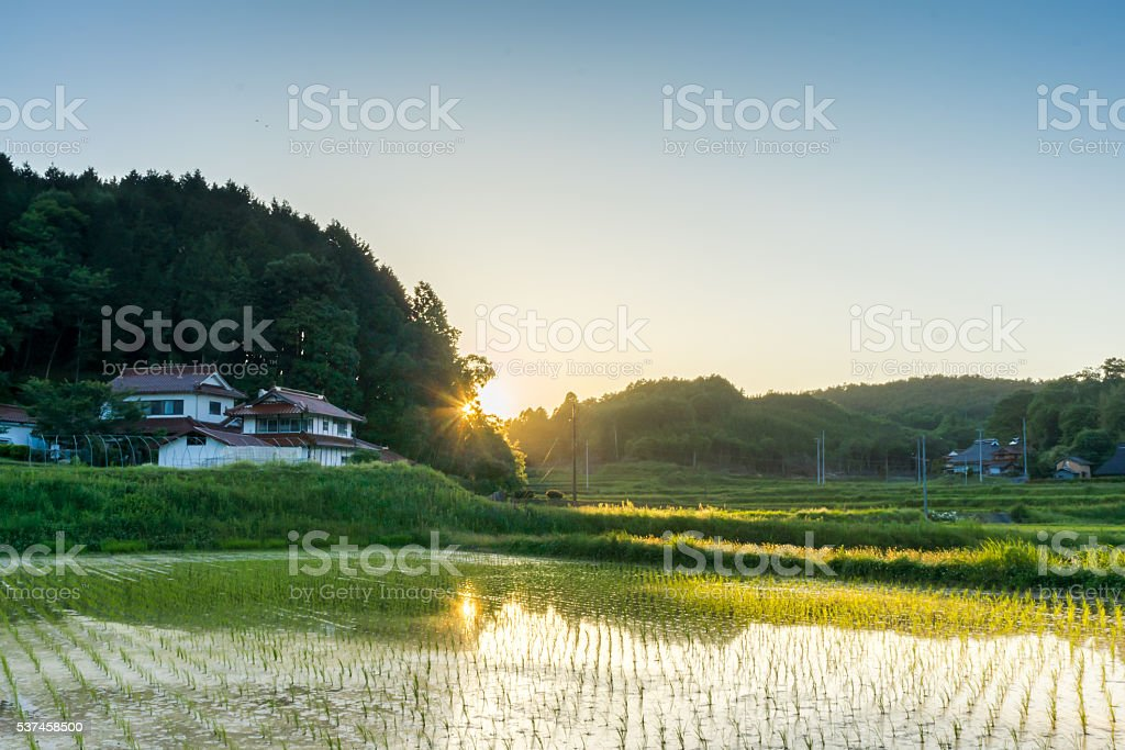 Sunset in countryside Japan stock photo