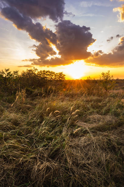 Sunset in countryside. stock photo
