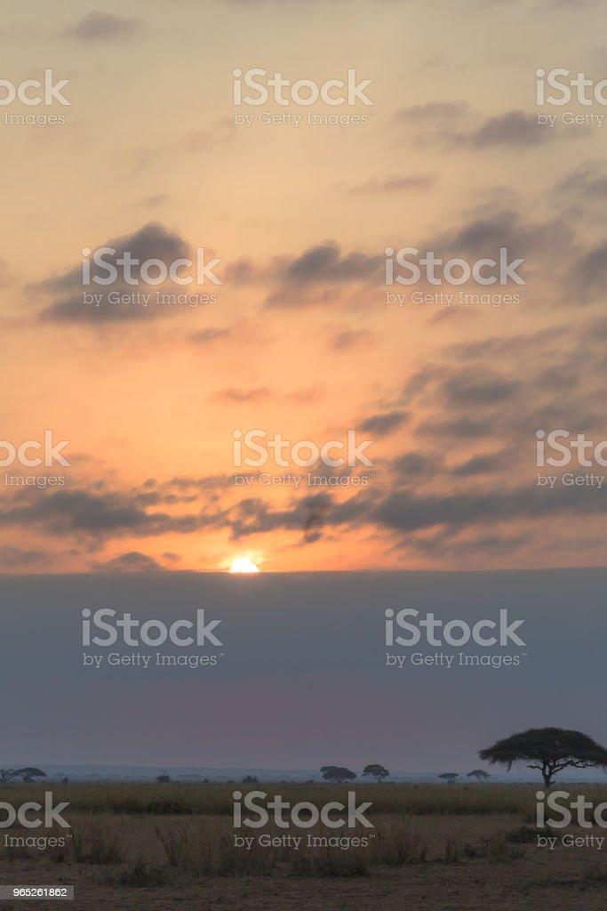 Sunset in dark clouds. Amboseli, Kenya zbiór zdjęć royalty-free