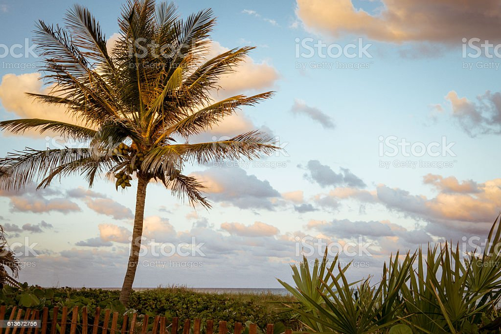 Sunset in Delray Beach stock photo