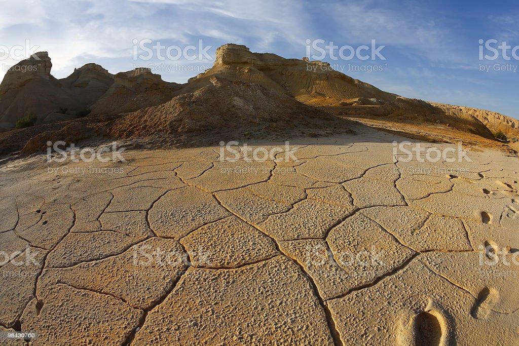 해질녘까지 있는 사막 이스라엘 royalty-free 스톡 사진