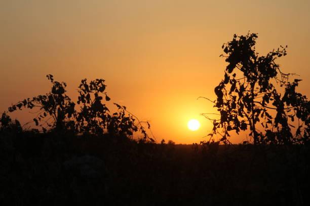 Sunset in Ethiopia stock photo