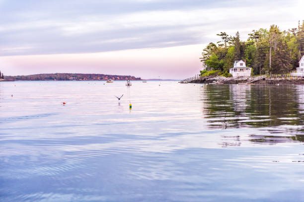 Sunset in evening at Boothbay Harbor in small village in Maine with rocky coast and houses in purple dusk stock photo