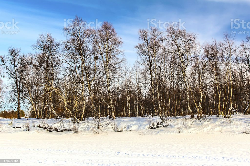 sunset in Finland  over snowscape royalty-free stock photo