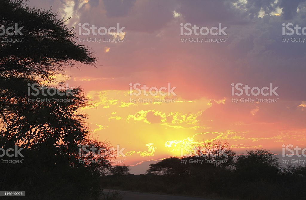 Sunset in Kruger Park, South Africa royalty-free stock photo