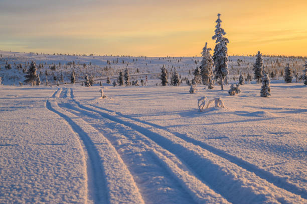 Sunset in Lapland stock photo