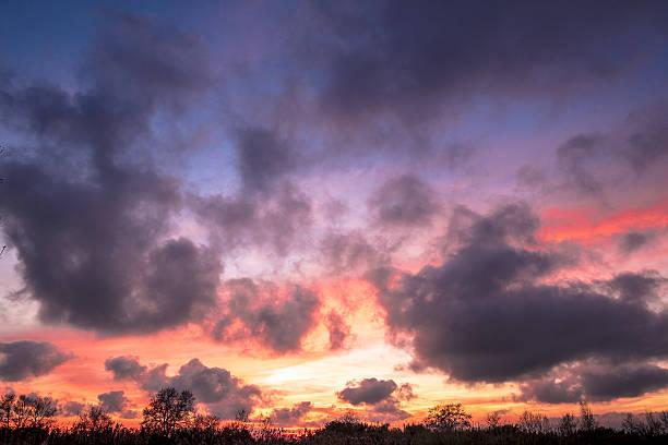 sunset in llobregat delta in barcelona - carlosanchezpereyra fotografías e imágenes de stock